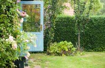 Søjlefrugttræer er gode i den lille have