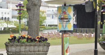 Tivoli blomsterkumme ved plænen