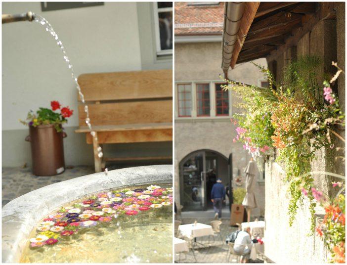 Blomster i en brønd og på væggen i Thun