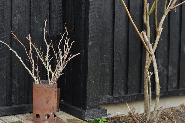 Grene med lav i en gammel rusten grillstarter
