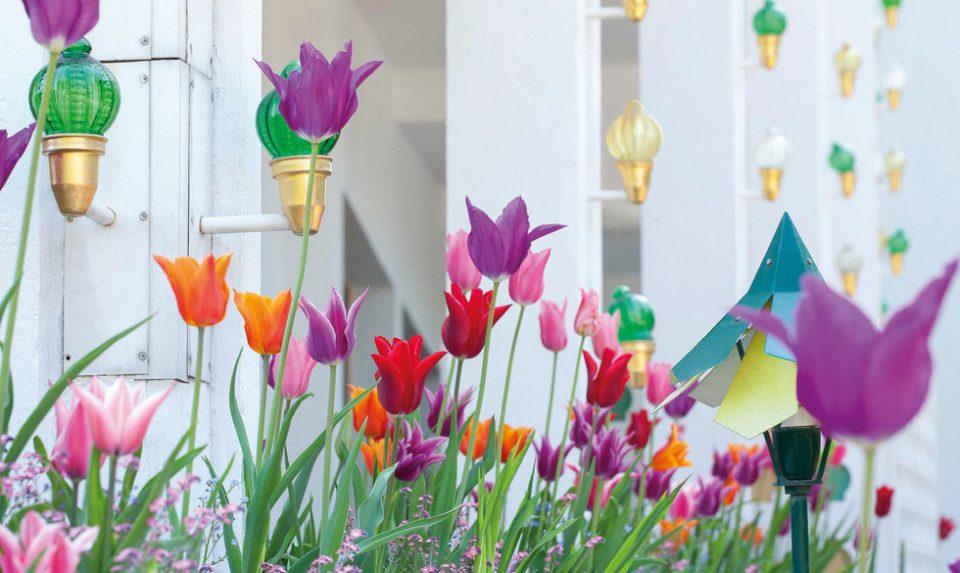 Fra bogen Tivoli en eventyrlig blomstrende have. Copyright Ann Malmgren