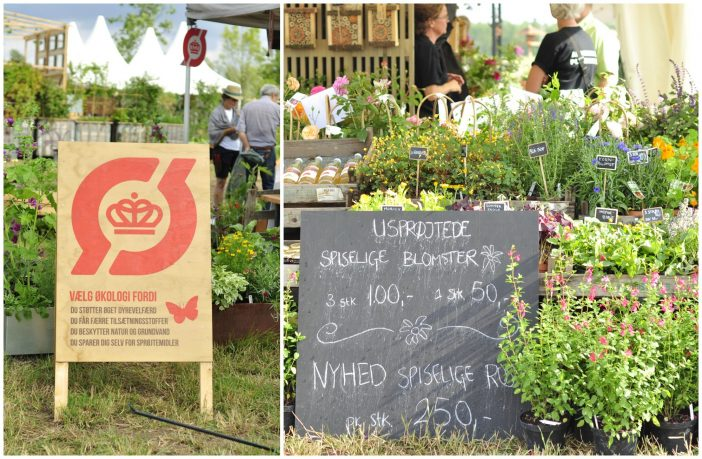 Økologi og bæredygtighed på Cph Garden 2019