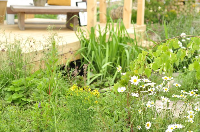 """Naturligvis"" - vild have på Cph Garden 2019"