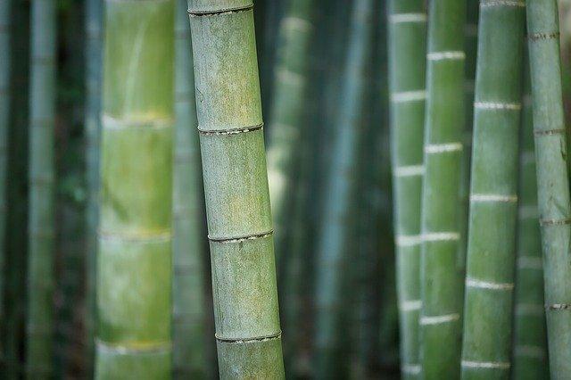 Bambus Kristall Tücher