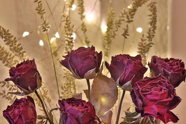 Trockenblumen kaufen