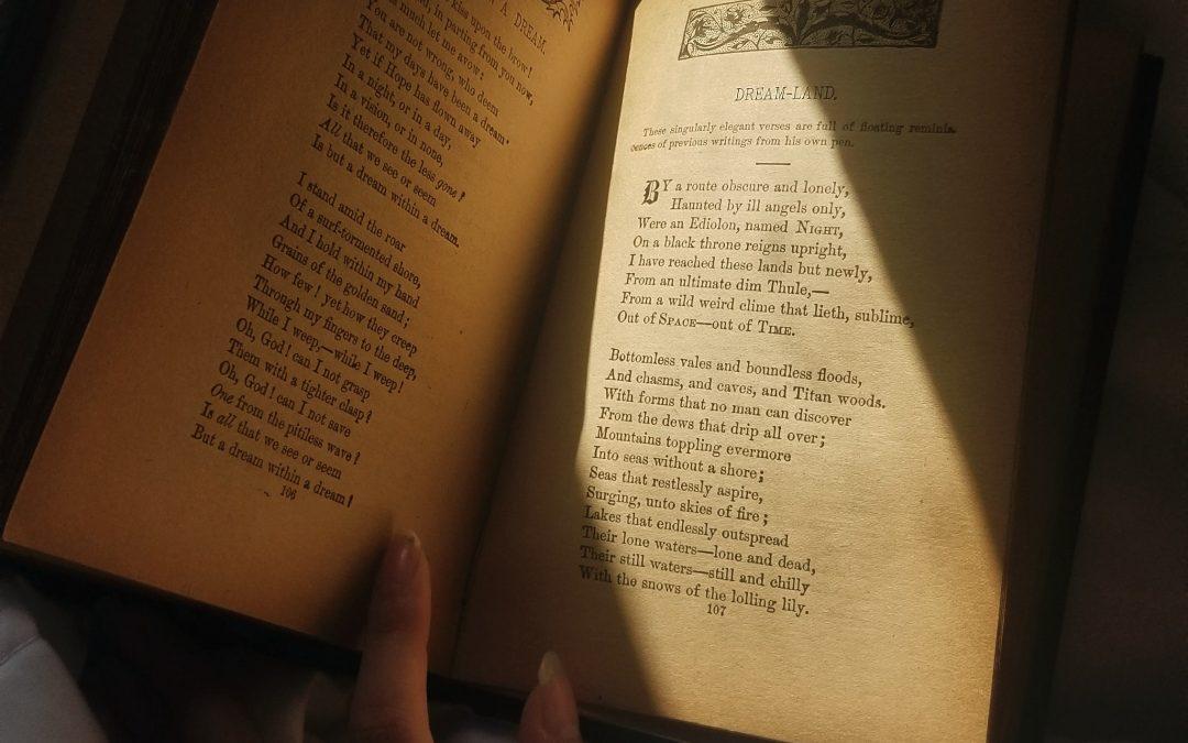 The Book Thief – Lauren Lonergan