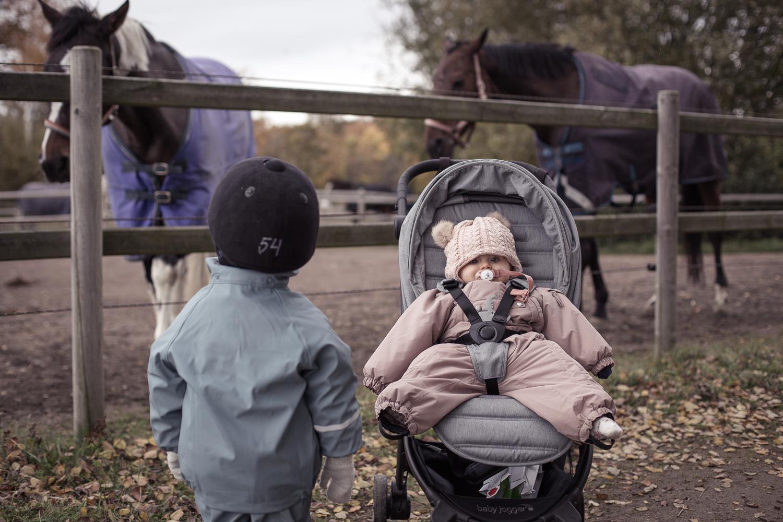 Hästridning barn