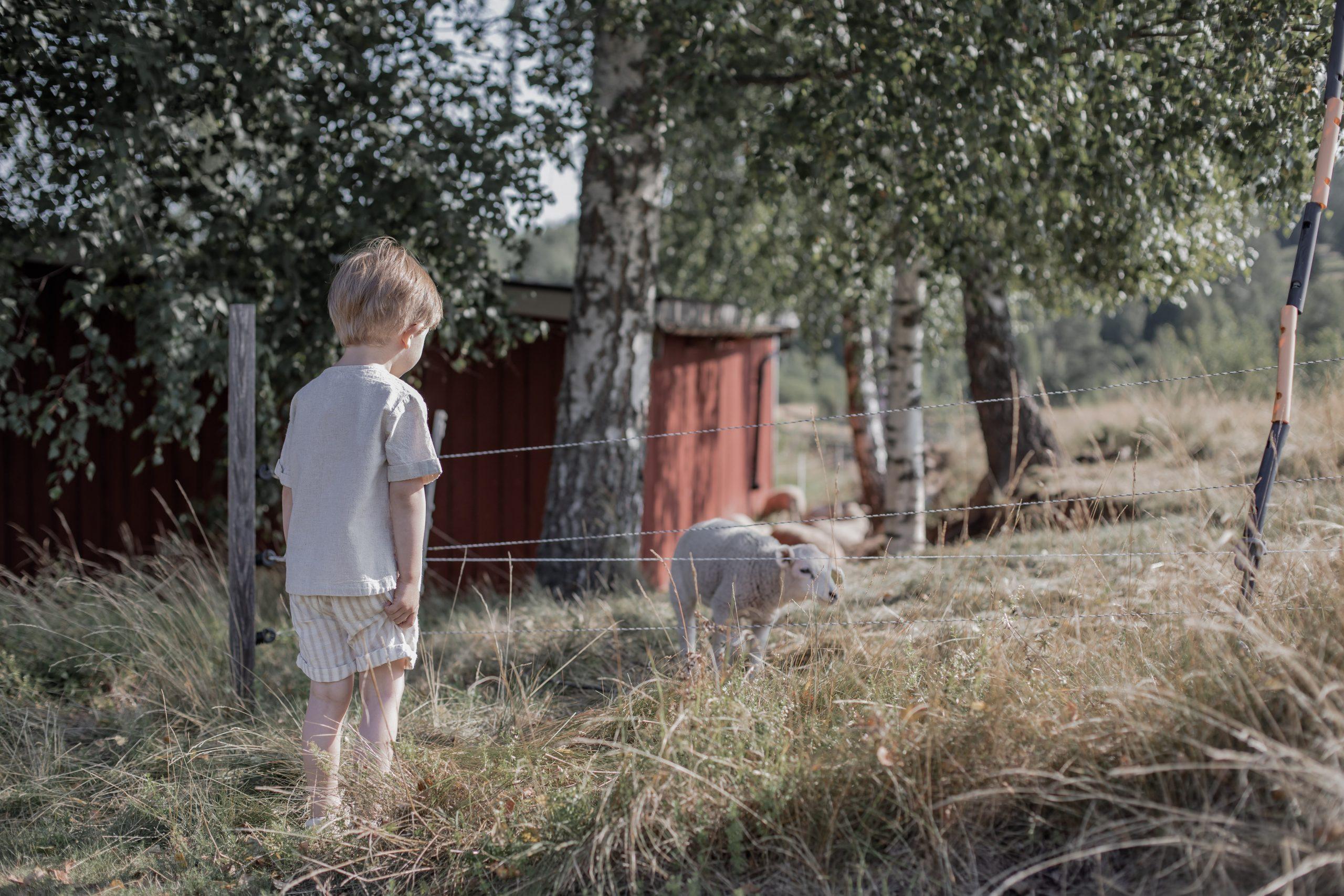Hyra stiga i Småland