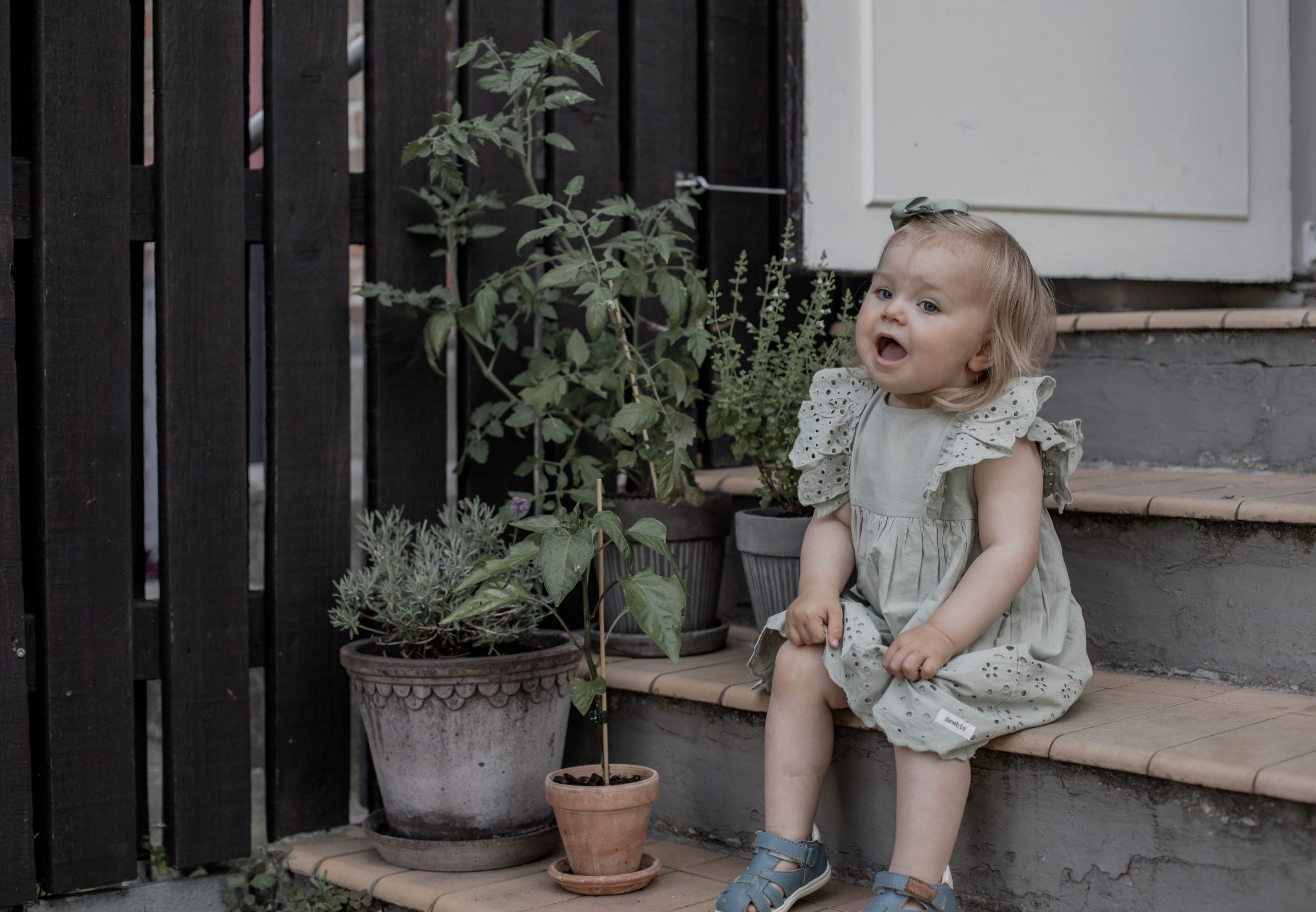 Trädgårdskrukor