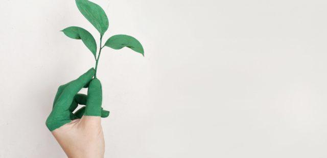 Dicionário da moda sustentável