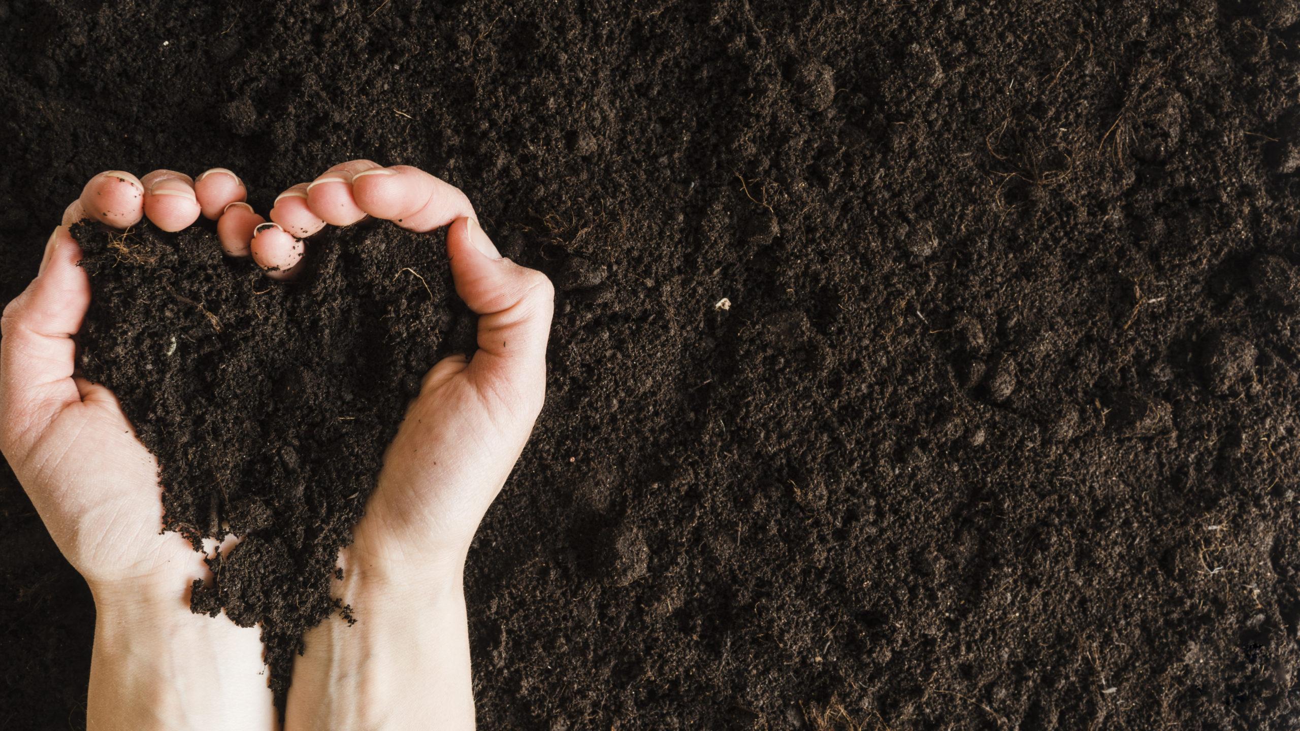 O que é compostagem? E como aderir?