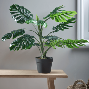 faux potted monstera plant