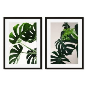 Two black-framed monstera photographic prints