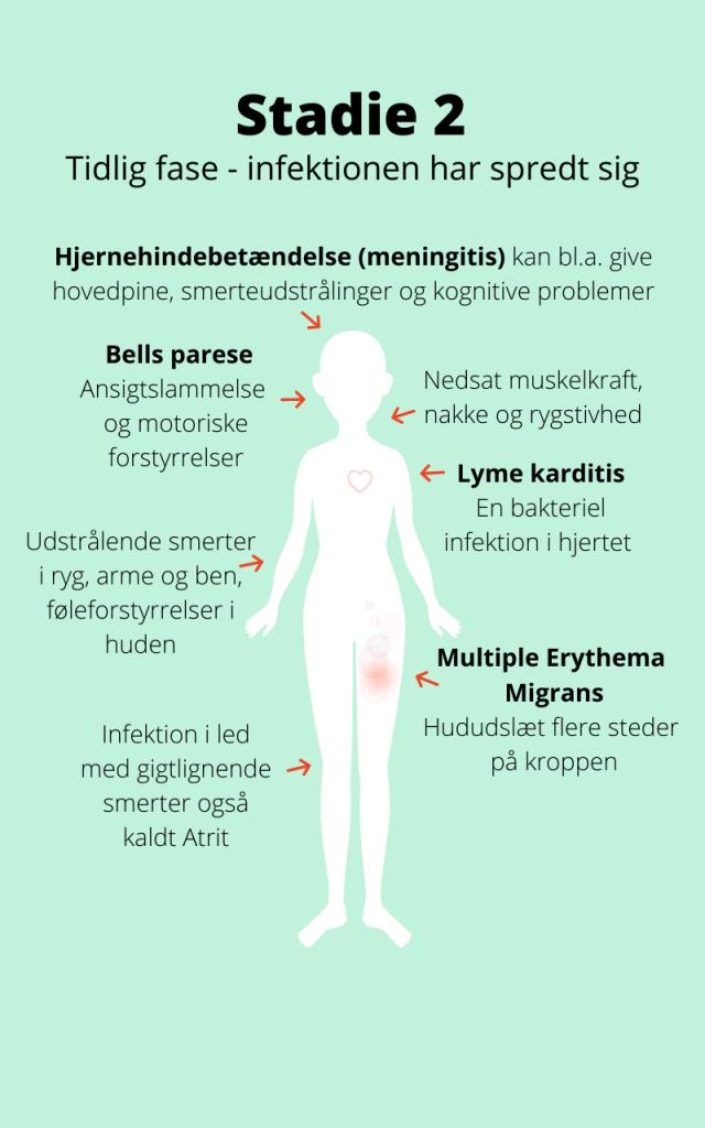infektion i ryggen symptom