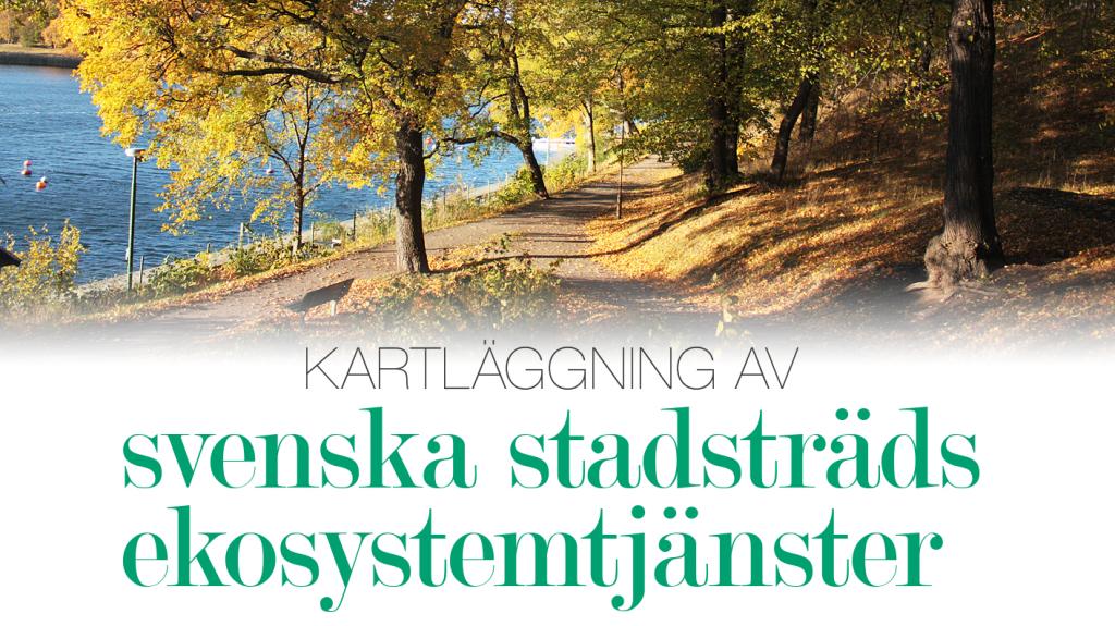 Kartläggning av svenska stadsträds ekosystemtjänster