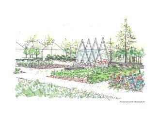 Midnattssolens köksträdgård