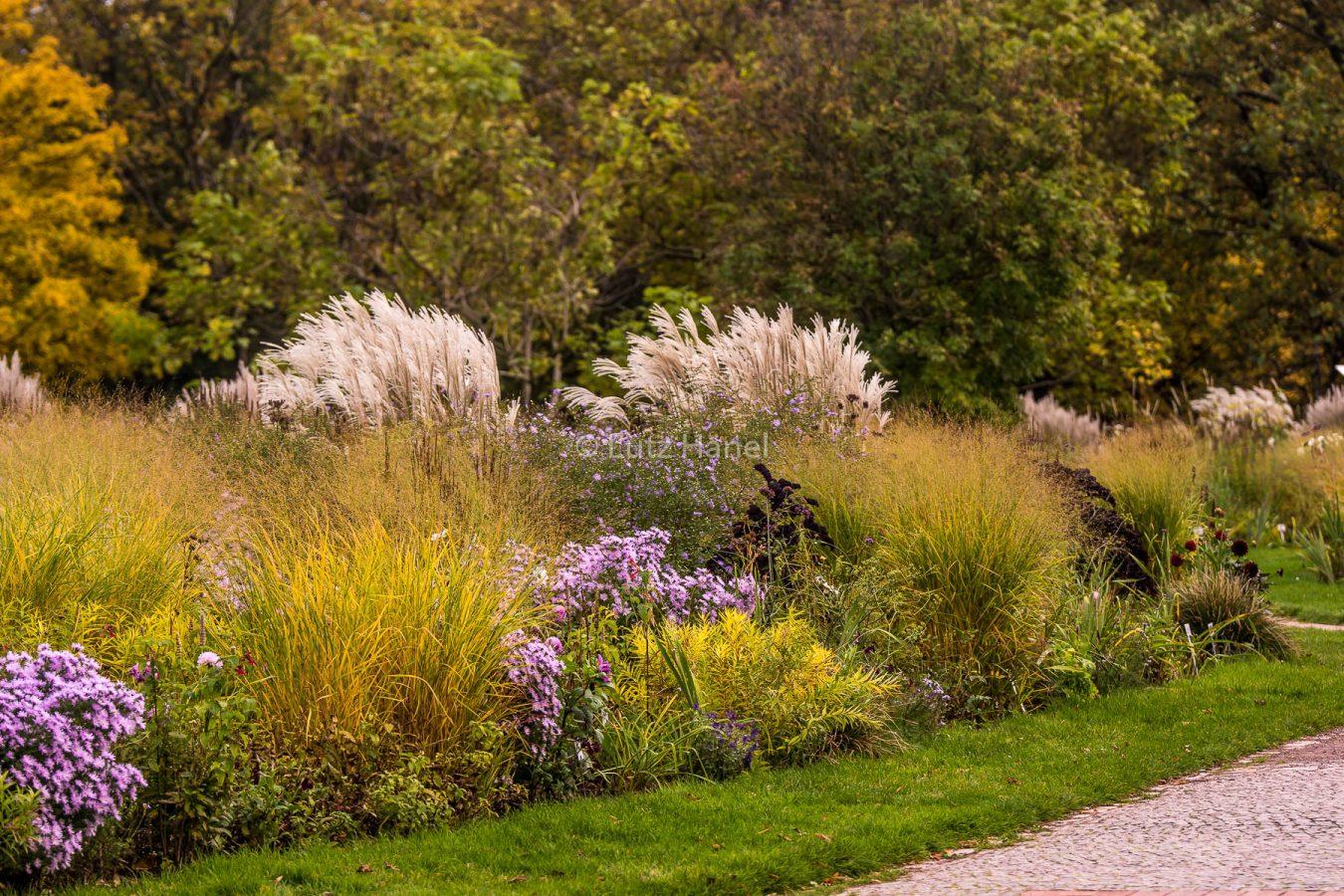 Herbstliche Stimmung in diesen herlichen Garten