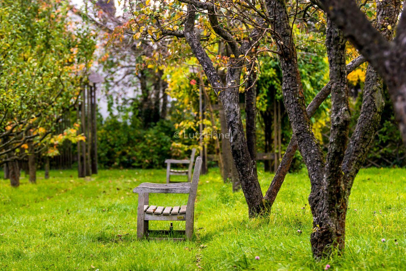 Sitzgelegenheiten lädt ein den Herbst zu geniessen
