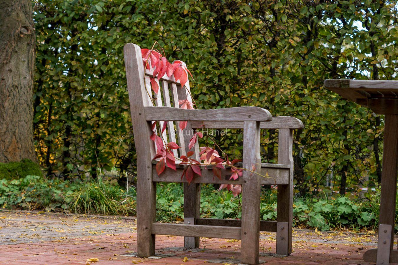 Bitte setzen im Herbstlichen Stuhl lädt er ein zum endspannen.