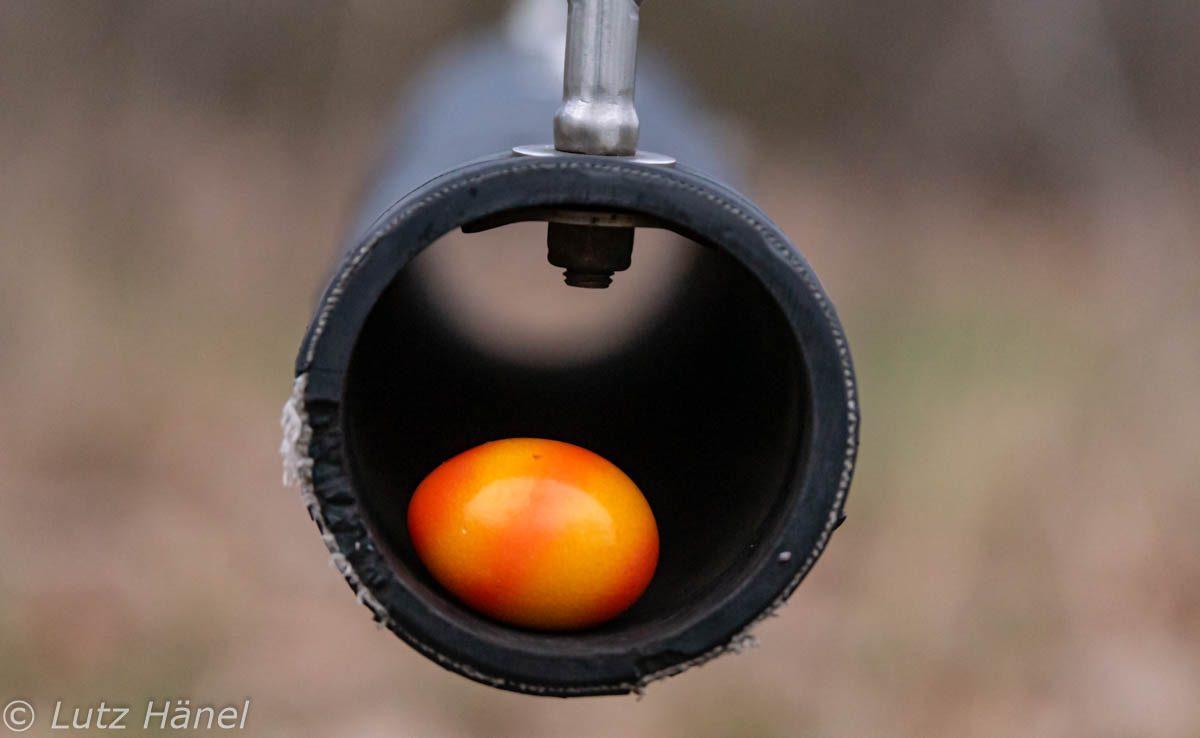 Eier Schauckeln mal Bildlich fest gehalten