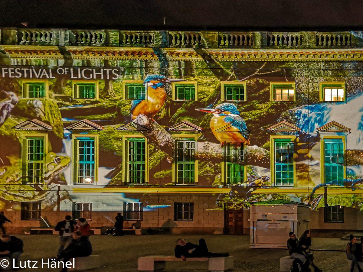 Auf dem Bebelplatz Detail Foto 2019 Festival of Lights & Berlin Leuchtet!