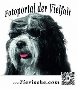 Tierische.com T-shirt Rückenansichtseite