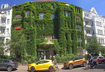 Grüne Lunge von Berlin