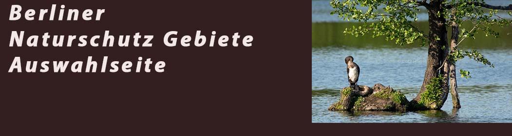 Berliner Naturschutz Gebiete Auswahlseite- Fotogalerie