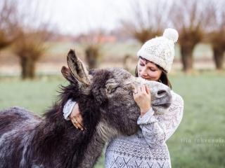 Aasin ja omistajansa suloinen halauskuva keväisessä Belgiassa