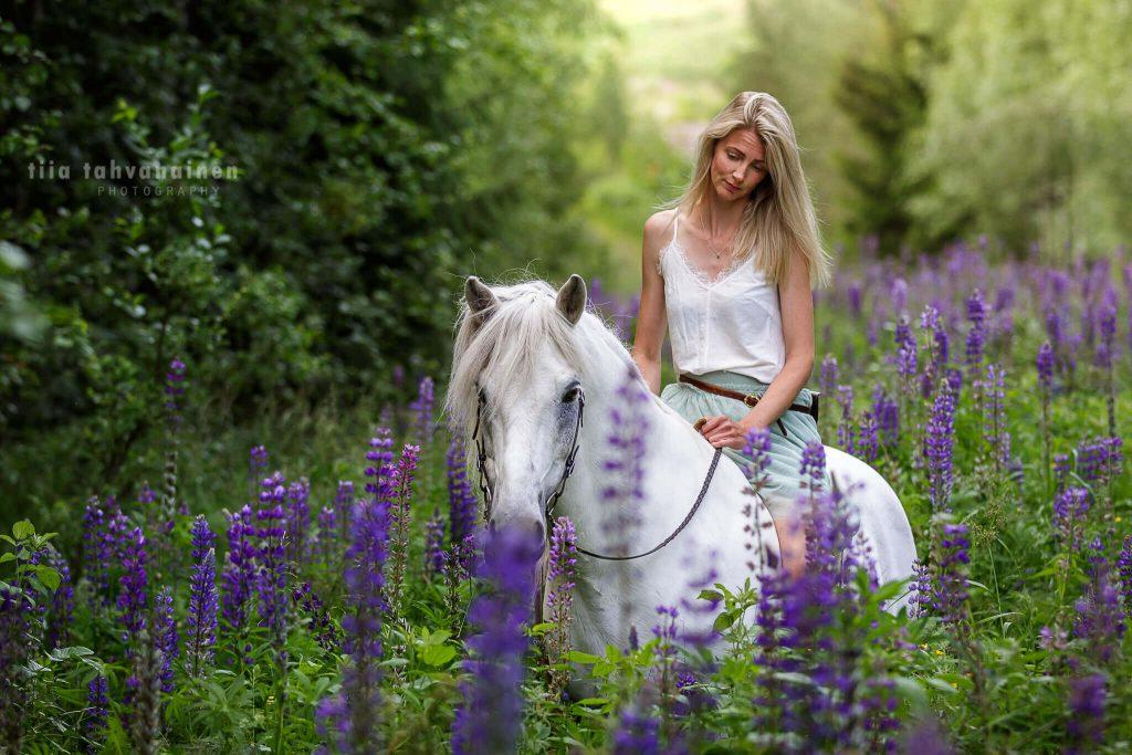 Valkoinen islanninhevosruuna violetissa lupiinipellossa valkoiseen toppiin ja vihreään hameeseen pukeutunut vaaleahiuksinen omistaja selässään kesällä