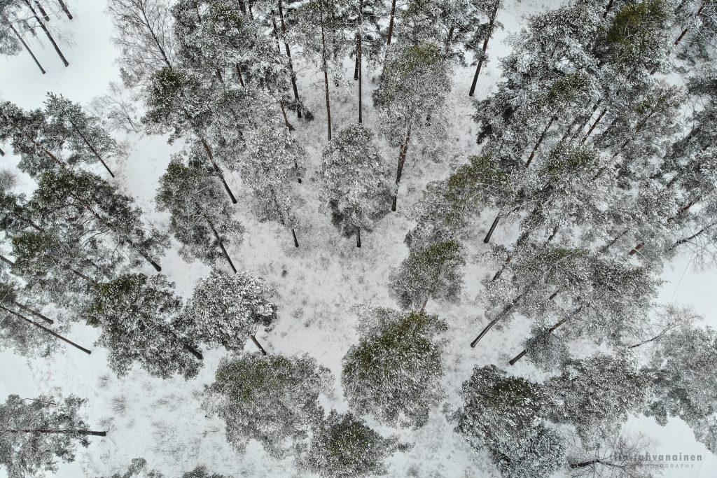 Dronekuva Säynätsalosta, Keski-Suomesta, talvimaisemaa