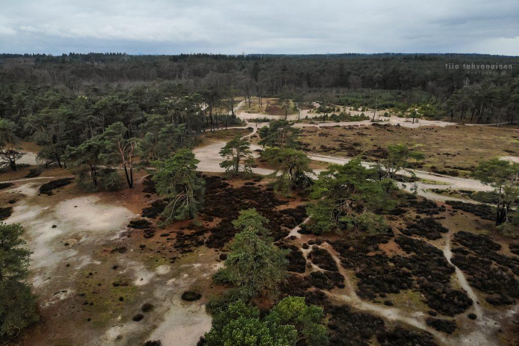 Dronekuva Alankomaista, Soester Duinen-hiekkadyyneiltä