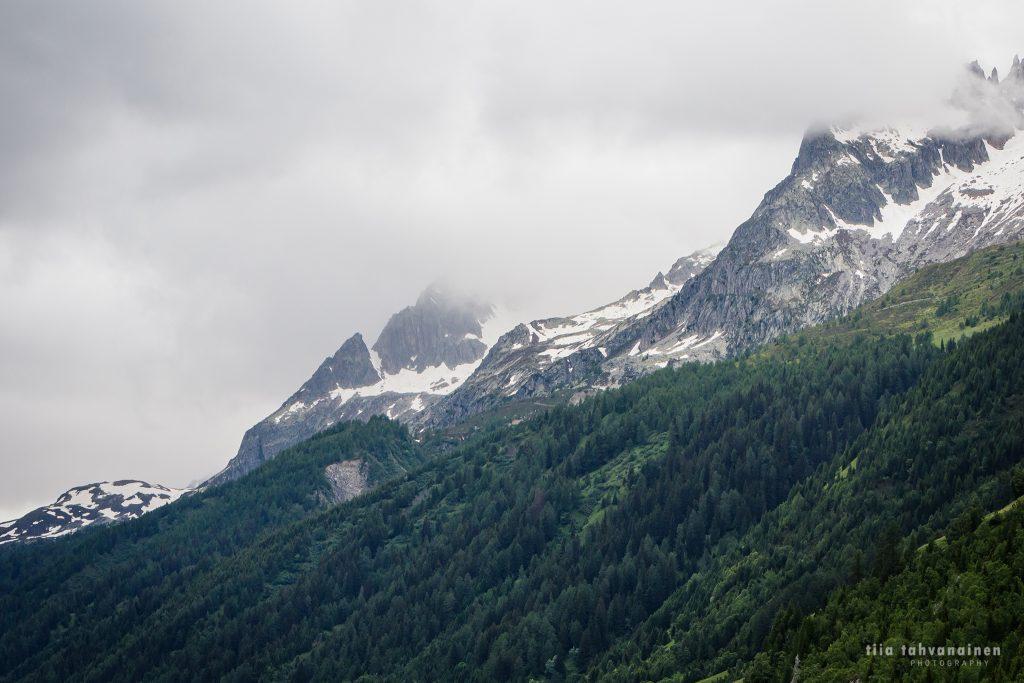 Lumihuippuisia, sumuisia vuoria ja vihreää metsää