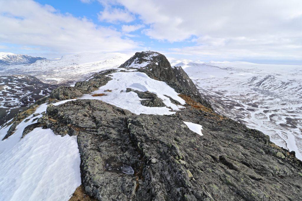 Langs ryggen av Knutshøe mot toppen.