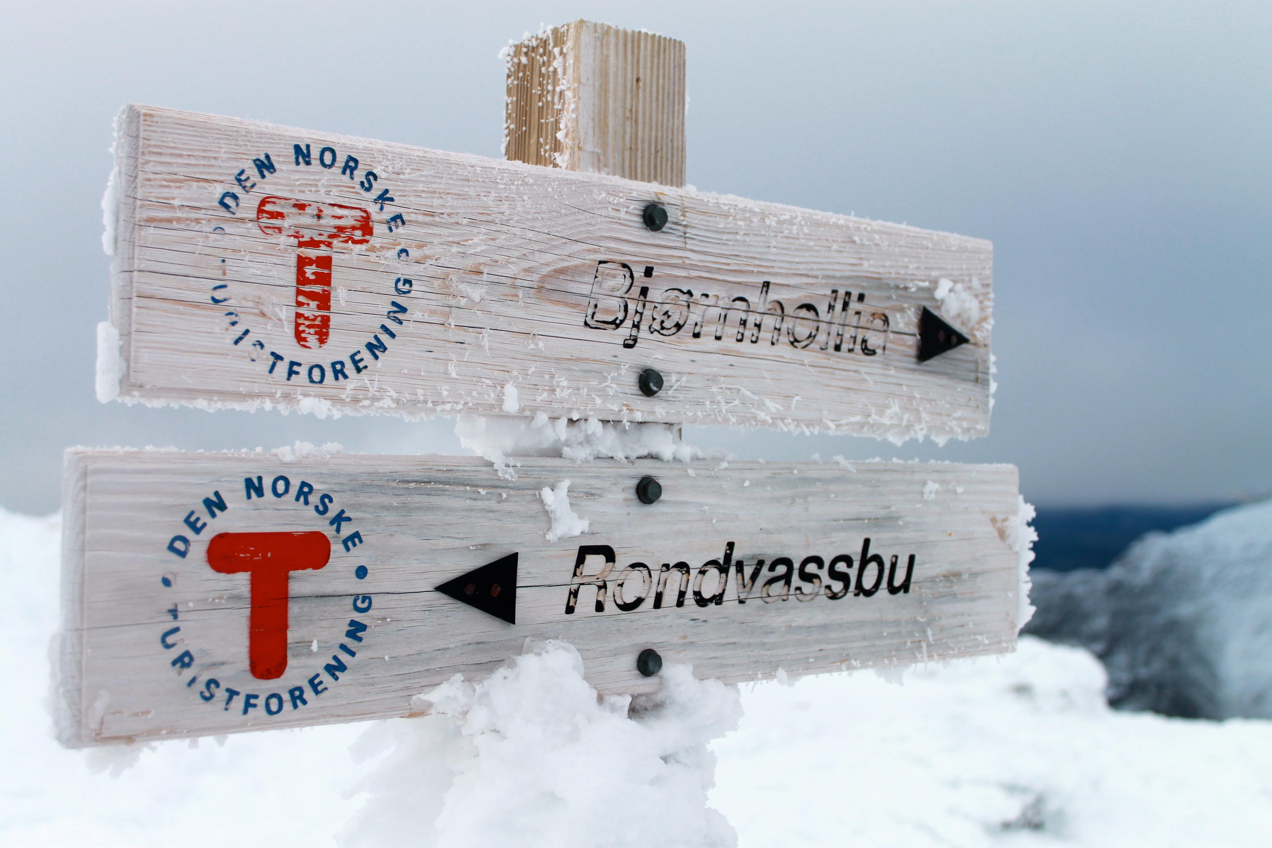 Rondvassbu og Bjørnholia er fine utgangspunkt for turen til Rondslottet.