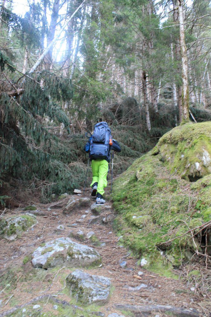 Turen starter fra Lovatnet og begynner på sti gjennom skogen.