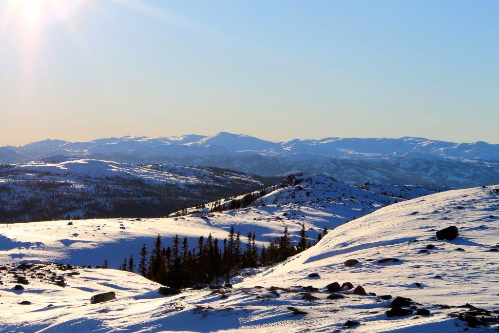 Utsikt mot Norefjellsryggen fra Nevlingkollen.