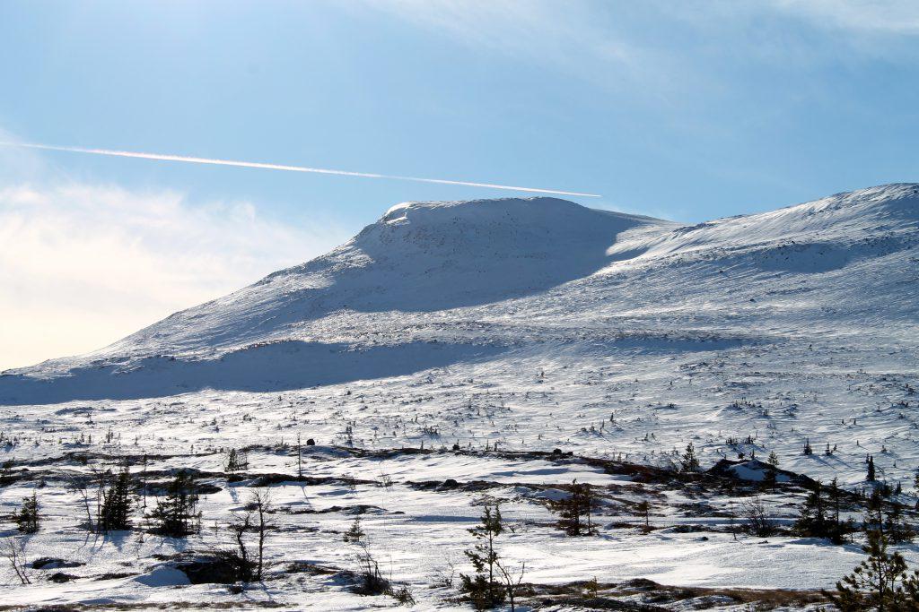 Høgevard (1.459 moh) sett fra Gulsviksætran, et fint utgangspunk for turer på Norefjellsryggen.