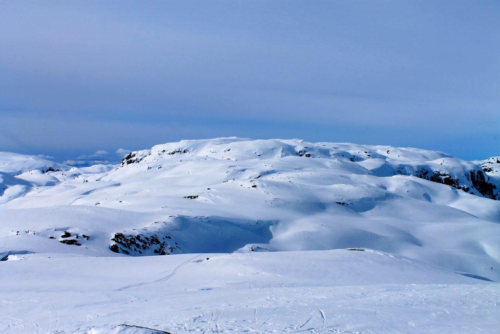 Fuglafjellet (1.334 moh) sett fra Torefjell.