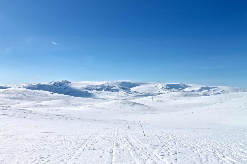 Vi har Hardangerjøkulen i ryggen på vei over fjellet mot Geiterygghytta.
