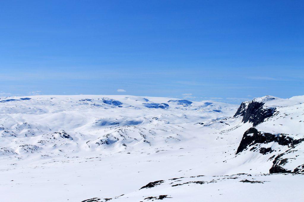 Den vestlige ryggen av Hallingskarvet har flott utsikt mot Hardangerjøkulen.