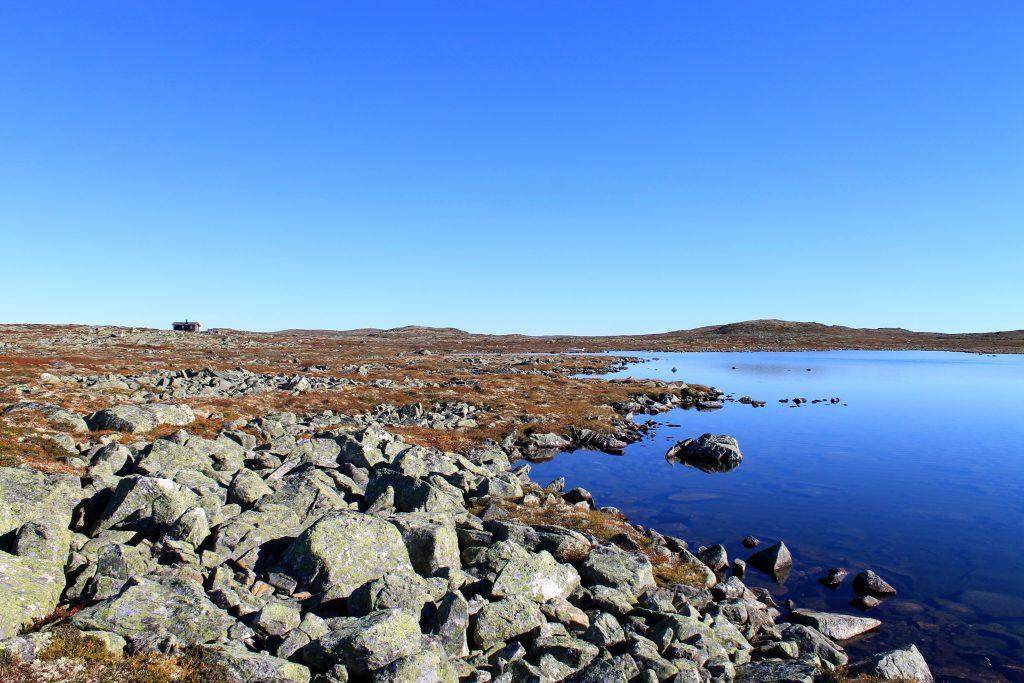 Det er flatt viddelandskap på store deler av Hardangervidda med flere flotte fiskevann.