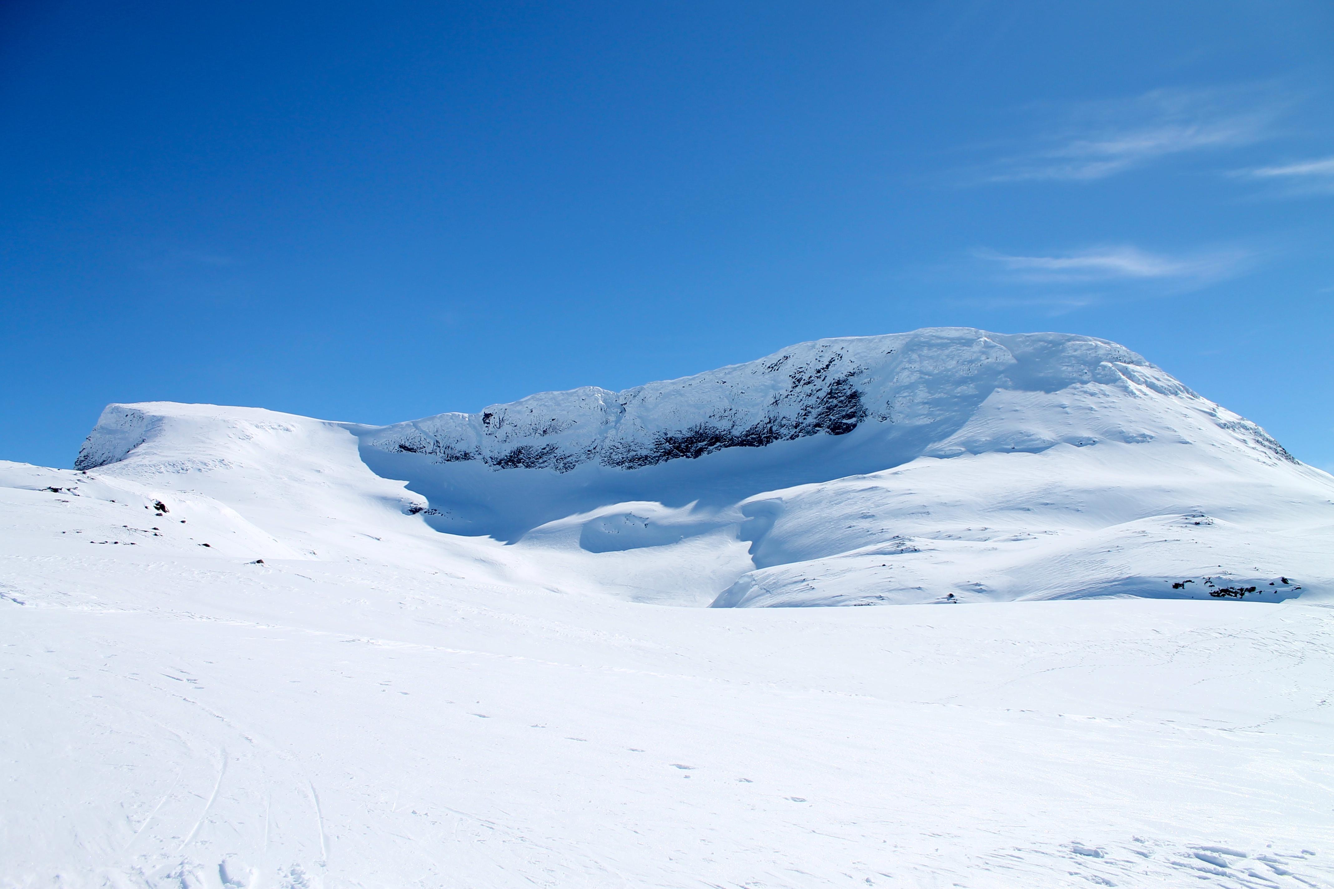 Normalruten opp Steindalsnosi fra Sognefjellet. Dette er en kort med fin topptur, som også gir fin nedkjøring.