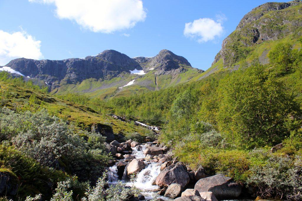 Rimstigbotn er en flott og grønn dal som Rimstigen går gjennom.