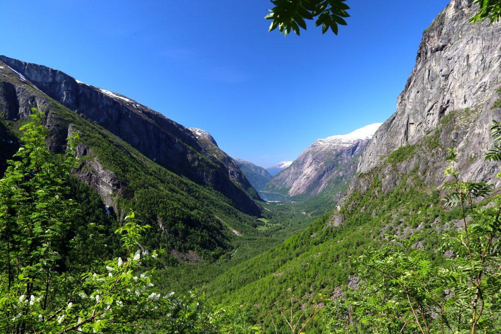 Det er flott å komme ned fra Hardangerjøkulen og Hardangervidda til Simadalen på våren.