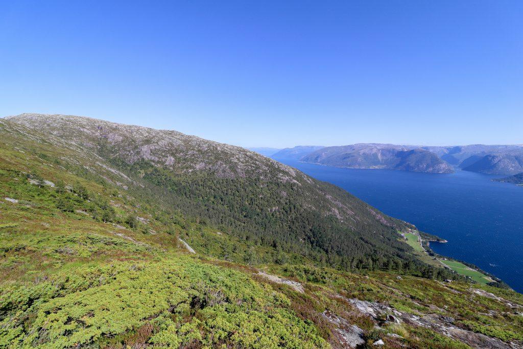 Ryggen fra Sognefjorden opp til Fløyen (766 moh) her sett fra nedgangen fra Haslelifjellet (781 moh).