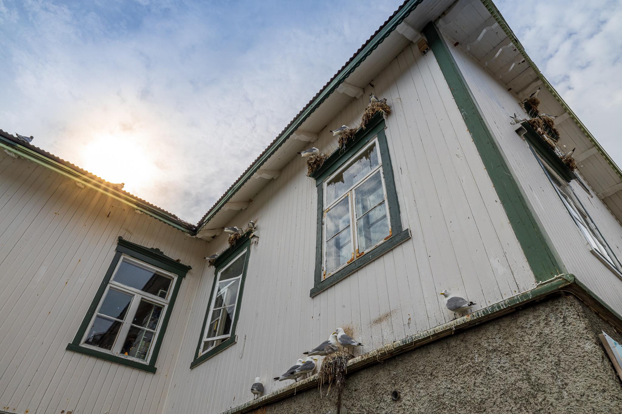Å i Lofoten