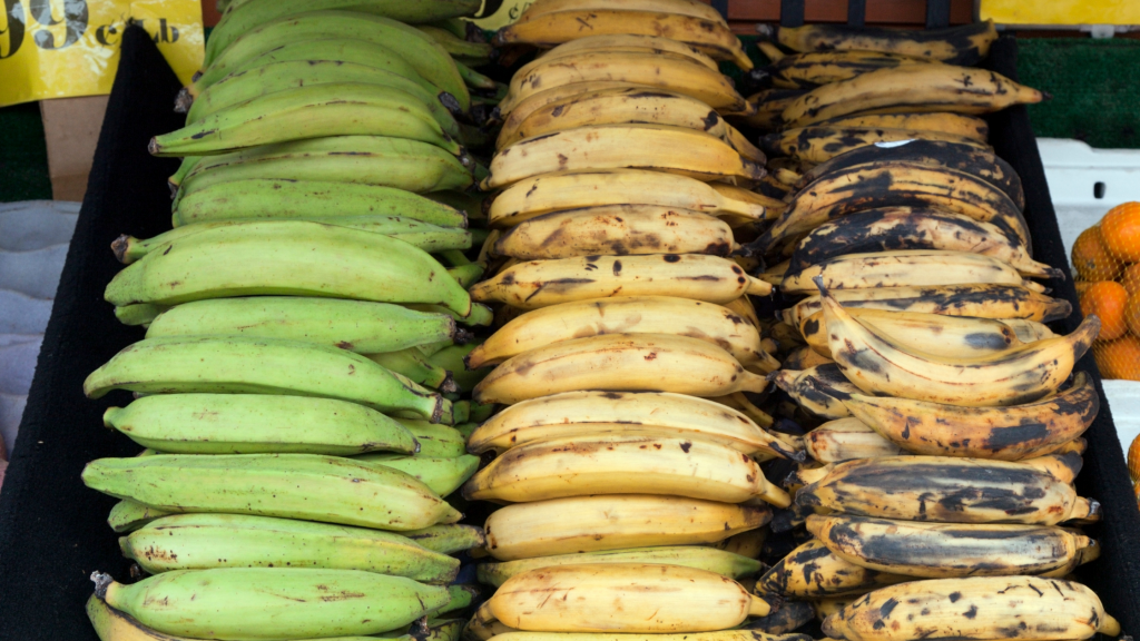 benefits of plantain