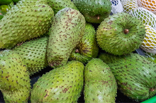 Nutritional Benefits of Soursop