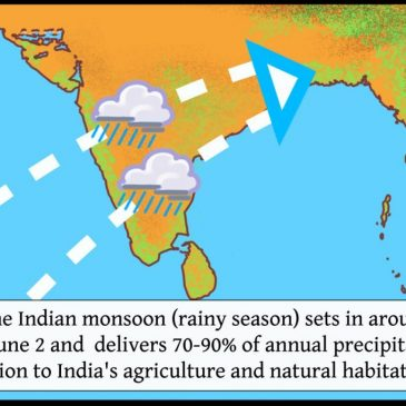 Improved prediction of Indian summer Monsoon onset three months in advance using machine learning